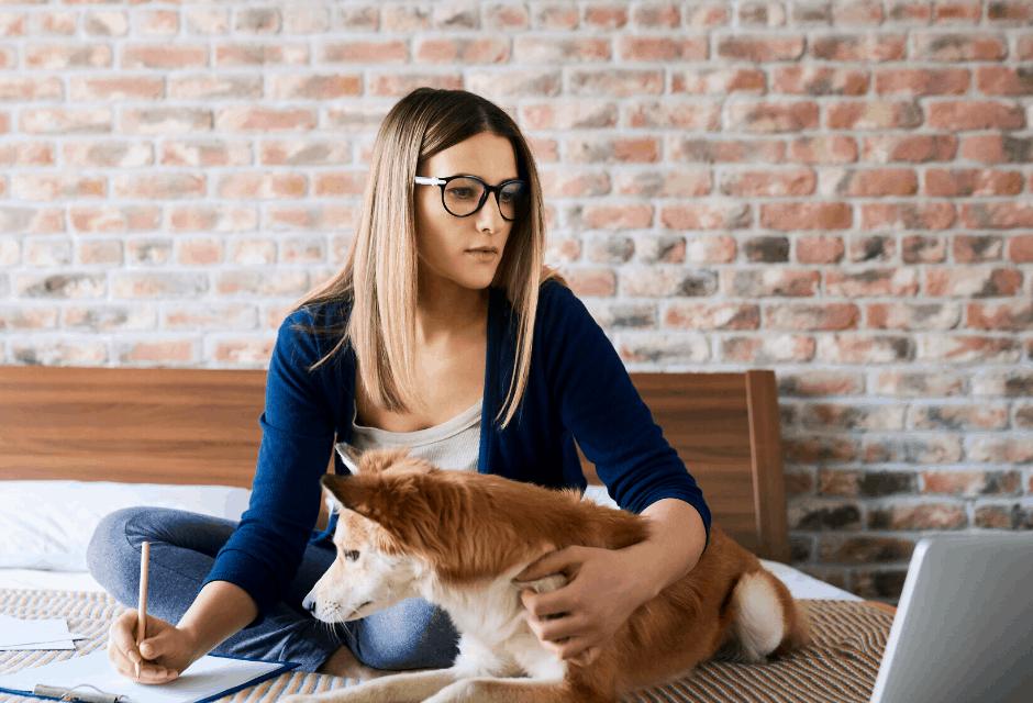 Work Your Way – How to Earn Money Online in 2020