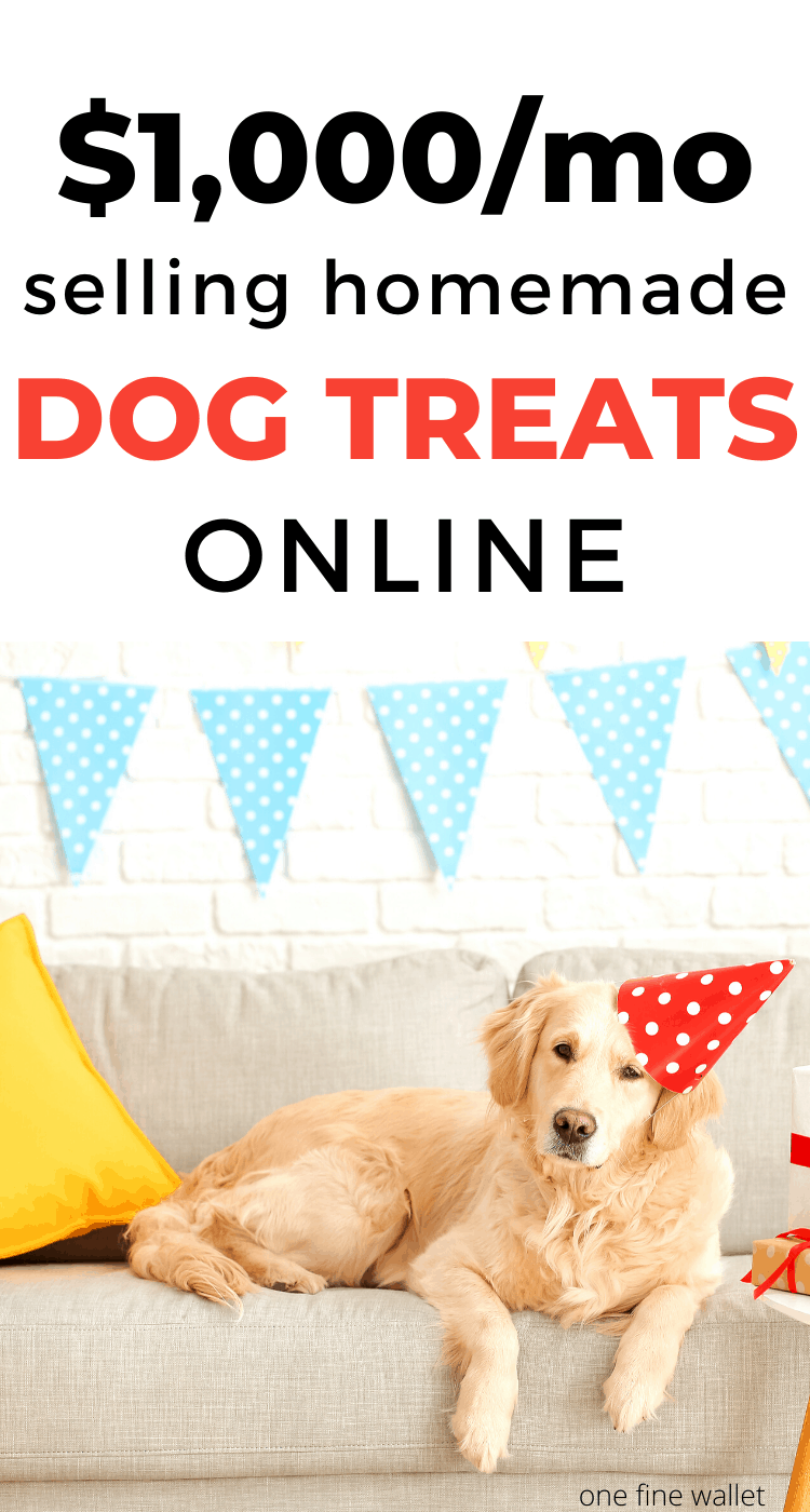 how to start a dog treat business at home. Home based online business ideas for women at home. Online business ideas. Ways to make money using the internet.