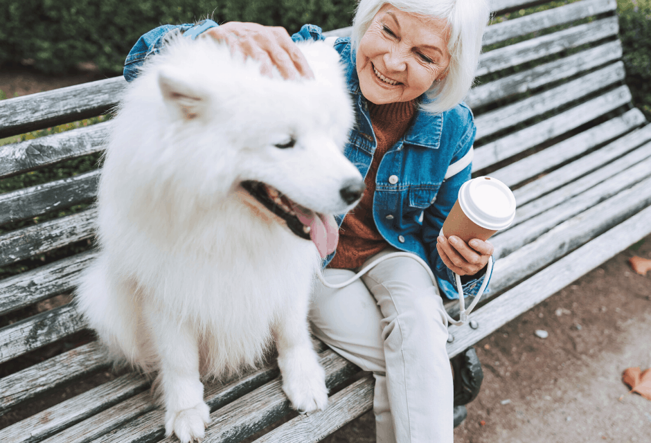 30 Low Stress Jobs After Retirement that are Easy and Fun!